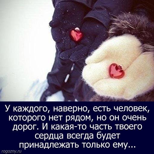 novijgod-14